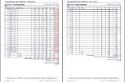 Auswertung: Kompakter Einsatzplan pro Monat sowie Arbeitsblatt zum Ausfüllen