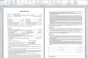 Ansicht der Betreuungsvertrags-Vorlage in Word